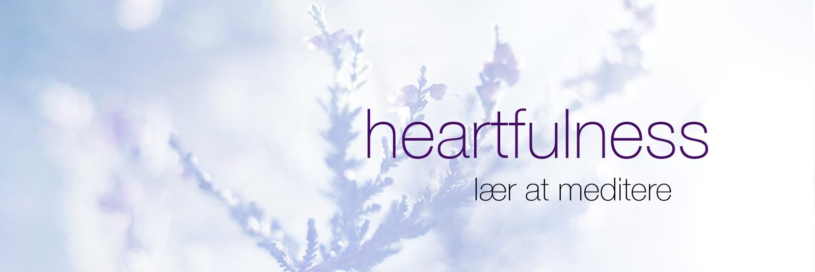 Heartfulness Meditation Danmark
